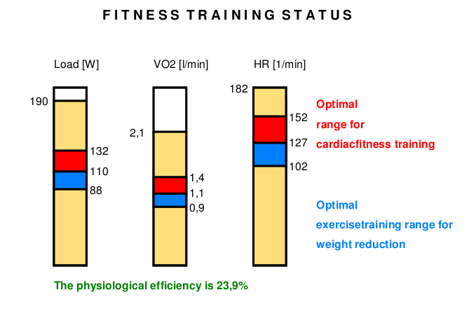 Training Recommendations